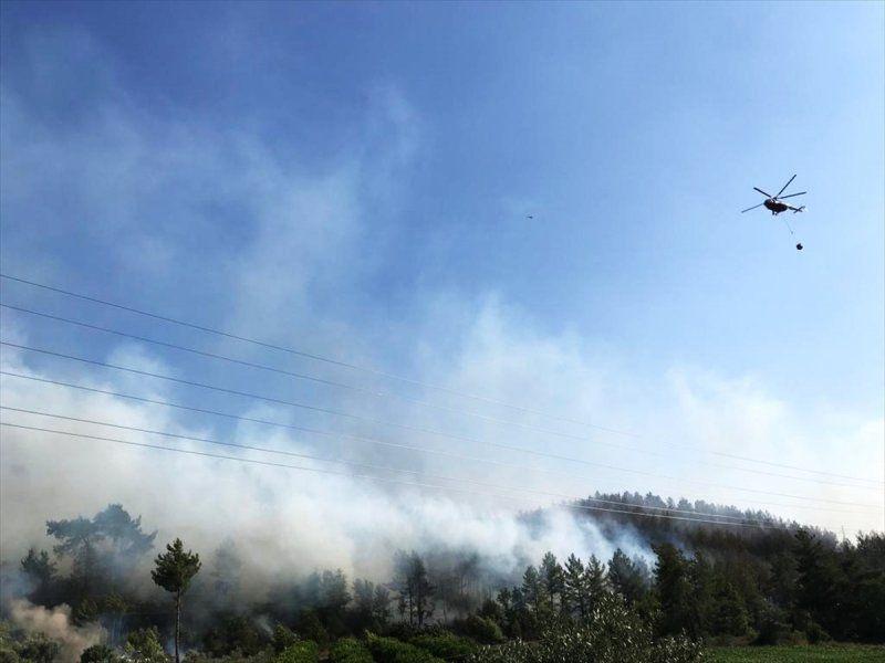 Dalaman'da son yılların en büyük yangını! Yürek sızlatan tablo gün ağarınca ortaya çıktı - Sayfa 2