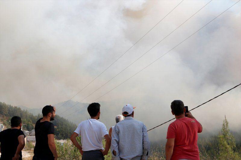 Dalaman'da son yılların en büyük yangını! Yürek sızlatan tablo gün ağarınca ortaya çıktı - Sayfa 4