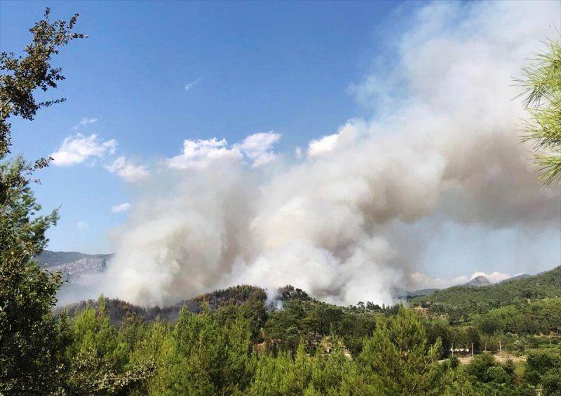 Dalaman'da son yılların en büyük yangını! Yürek sızlatan tablo gün ağarınca ortaya çıktı - Sayfa 1