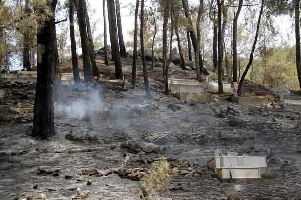 Muğla'nın Dalaman ilçesinde çıkan orman yangını söndürüldü - Sayfa 6