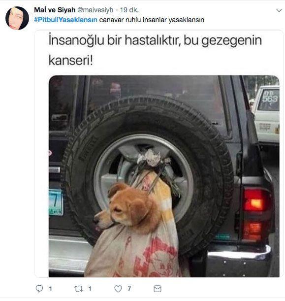 Adana'daki dehşet olay sonrası 'PitbullYasaklansın' etiketi TT oldu - Sayfa 6