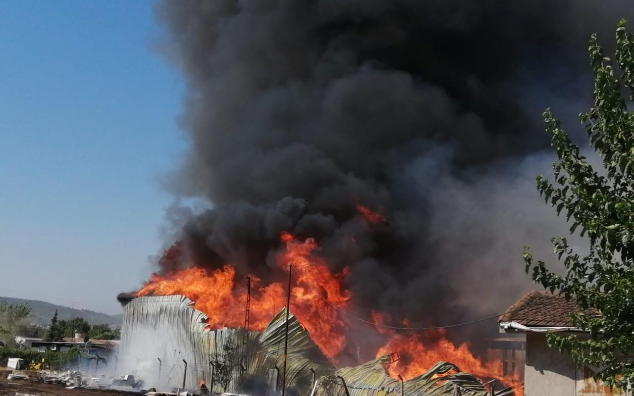 İzmir Bornova'da palet fabrikası alev alev yanıyor
