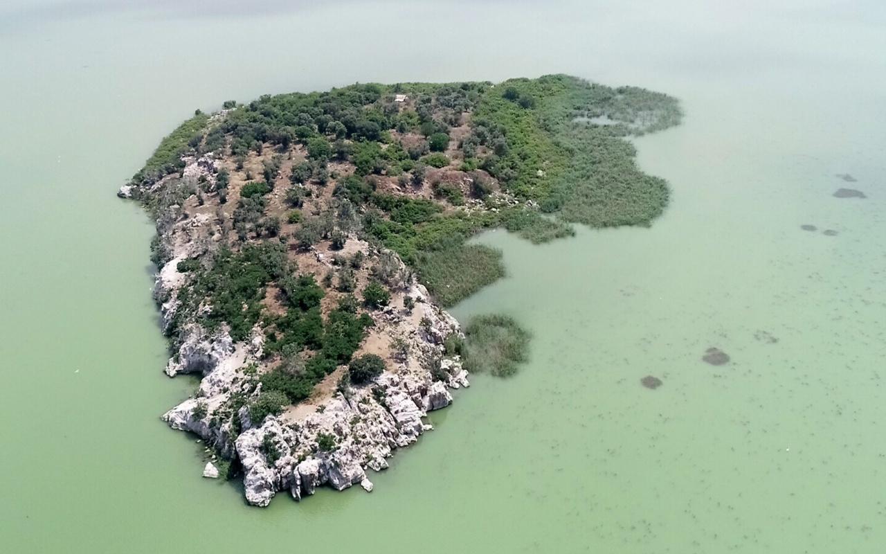 Sahibinden 17 milyon liraya satılık ada! Bursa'da Uluabat Gölü'nde