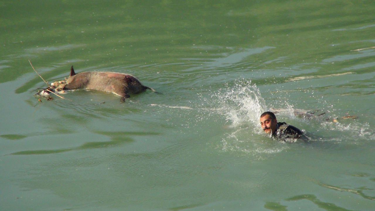 Yardım için ırmağa koştular gördükleriyle şaşkına döndüler