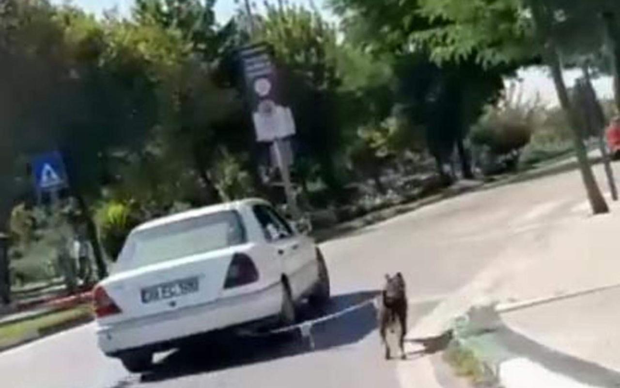 Kırklareli'nde köpeğini otomobiline bağlamıştı! Cezası belli oldu