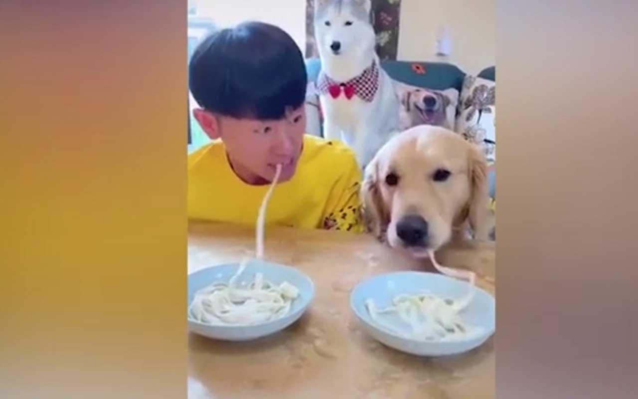 Köpeğiyle erişte yeme yarışı yaptı görüntüleri sosyal medyada viral oldu