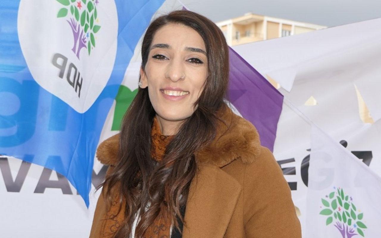 HDP Mardin İl Başkanı gözaltına alındı