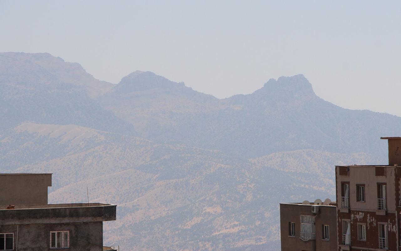 Gabar Dağı'nda bulunanlar 45 milyon yıllık çıktı Şırnak tarihini değiştirecek keşif