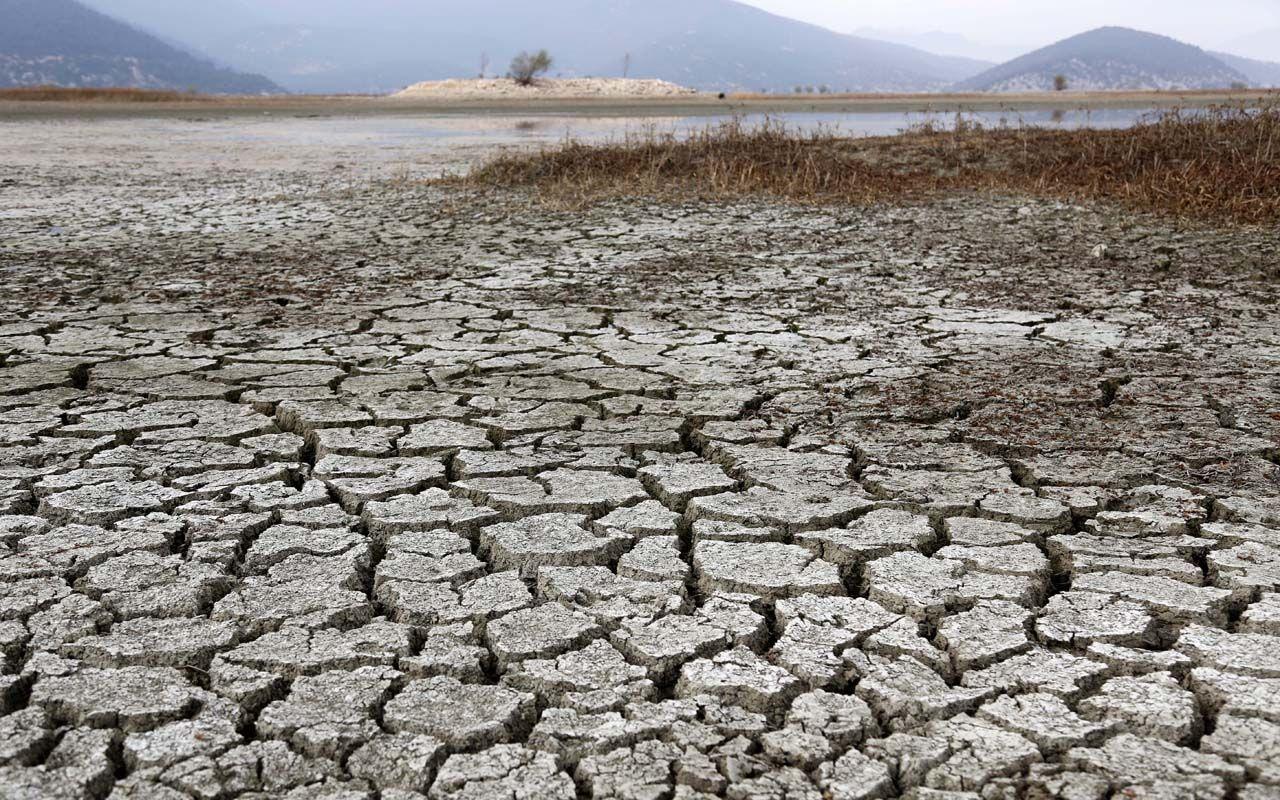 Mikdat Kadıoğlu iklim değişikliğine karşı uyardı! Hastalıklar artacak