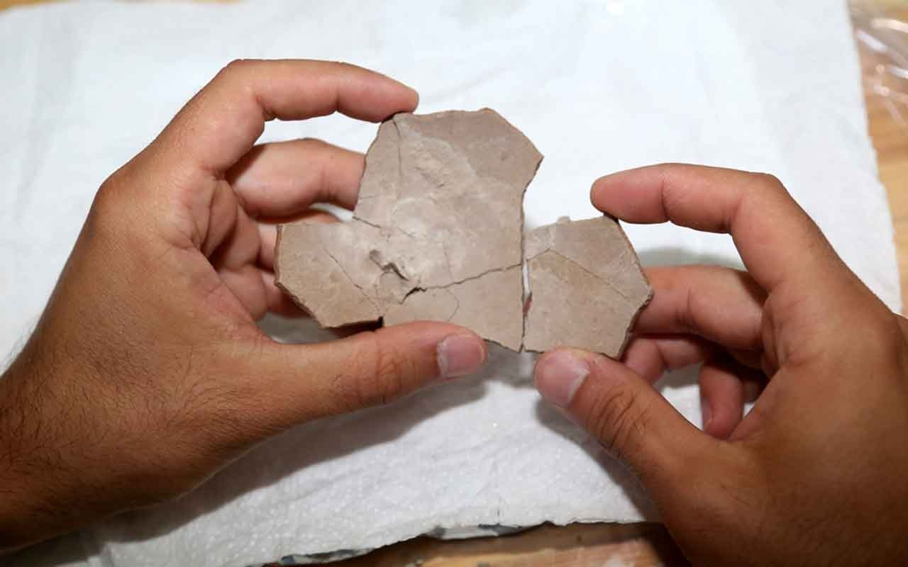 Çankırı'da 8,5 milyon yıllık deve kuşu yumurtası bulundu