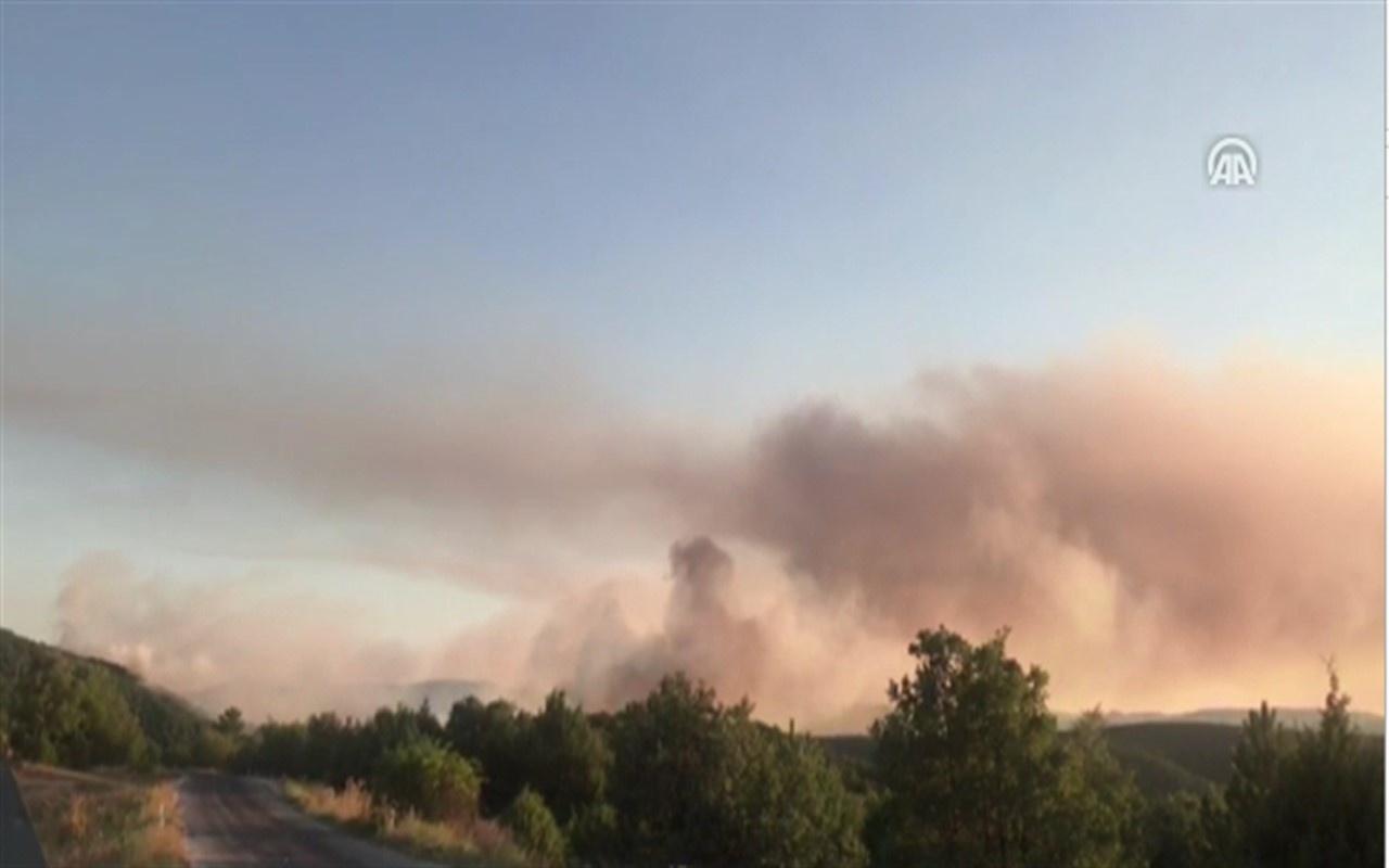 Eskişehir'de orman yangını çıktı