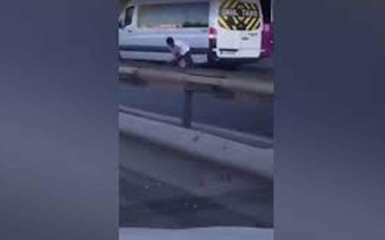 Canını hiçe sayıp otoyola atlayan adam yavru kediyi böyle kurtardı