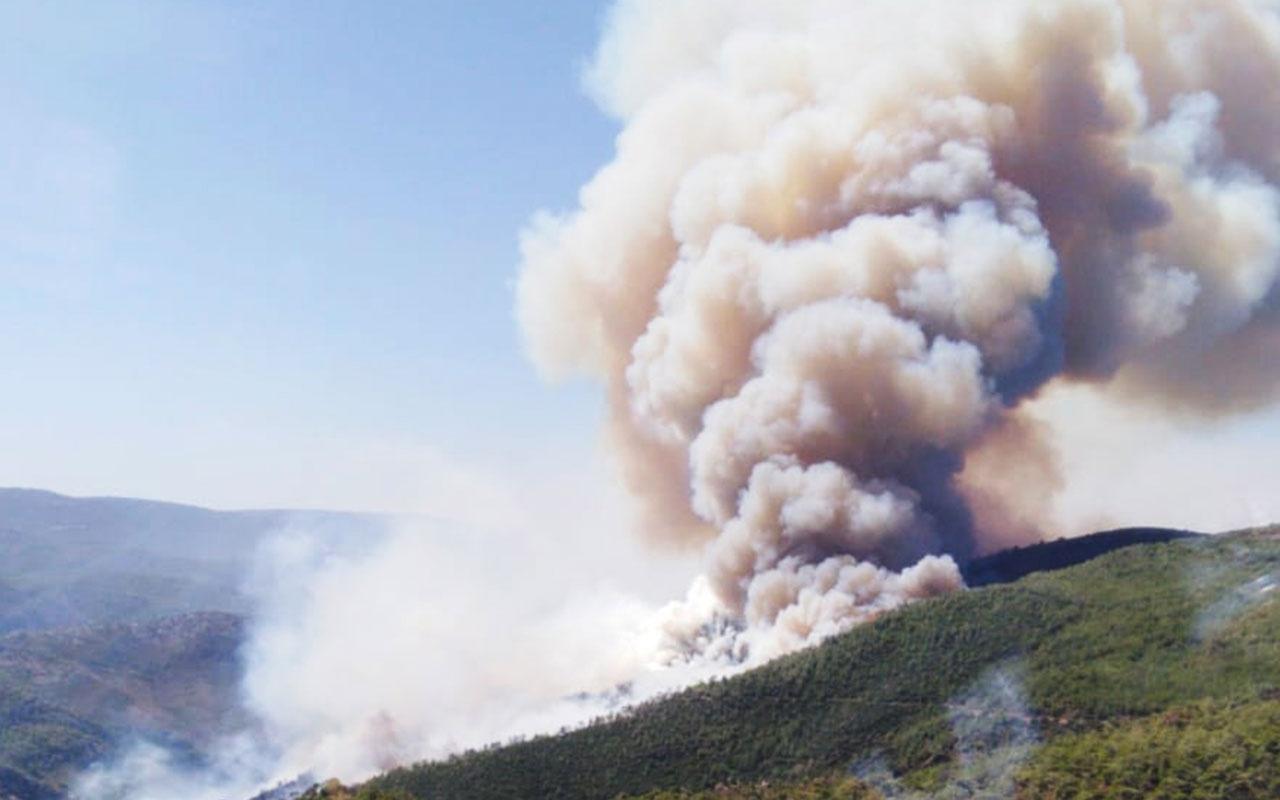 Milas ve Bornova'da orman yangını! Pakdemirli'den açıklama geldi