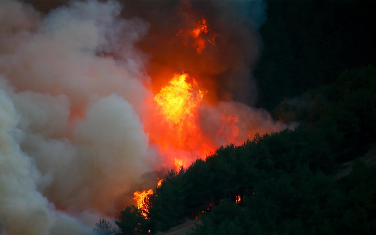 Trabzon'daki örtü yangınlarıyla ilgili yeni gelişme! 7 kişiye soruşturma