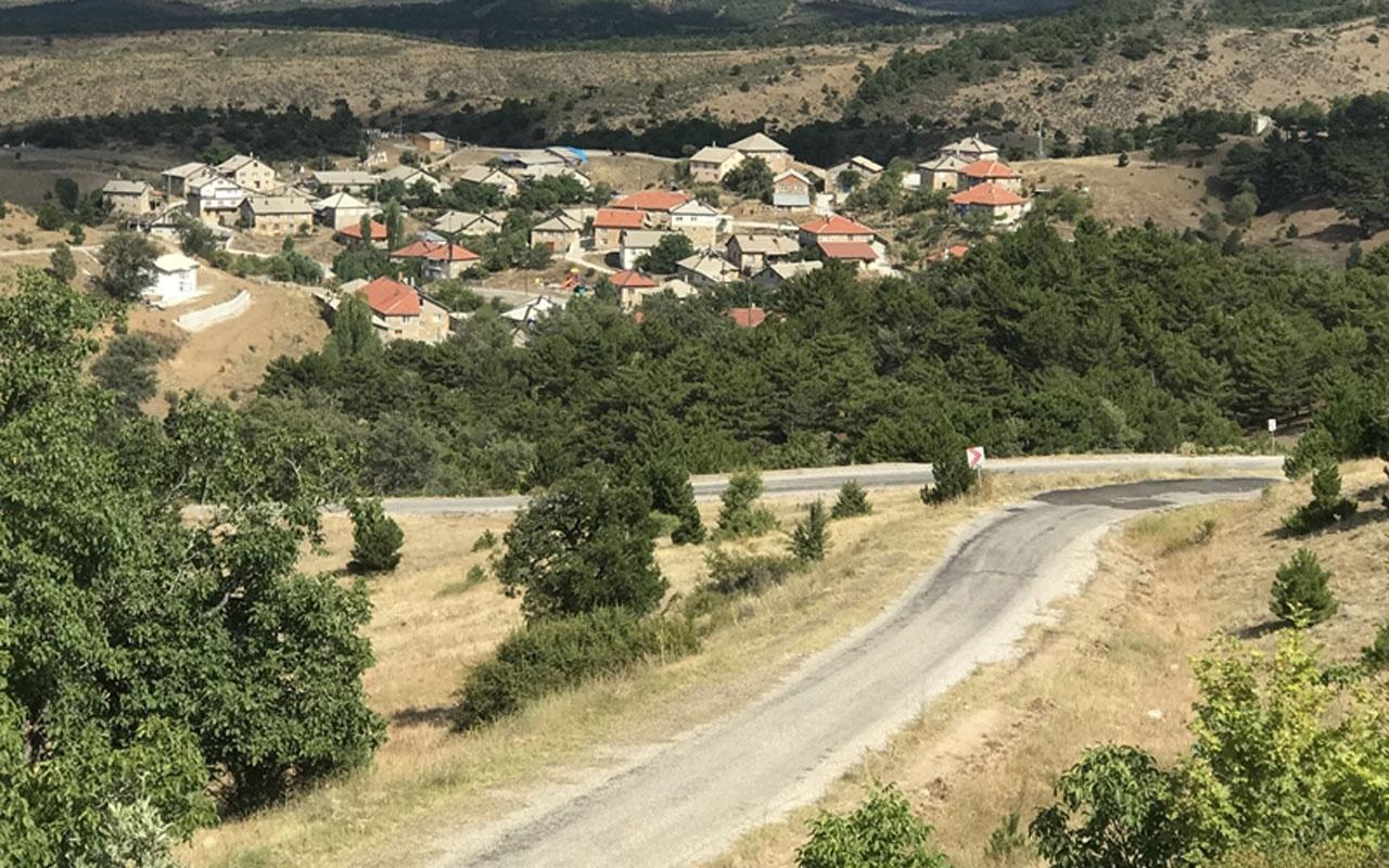 Konya Seydişehir'de 35 haneli Yenice mahallesinden 25 doktor çıktı