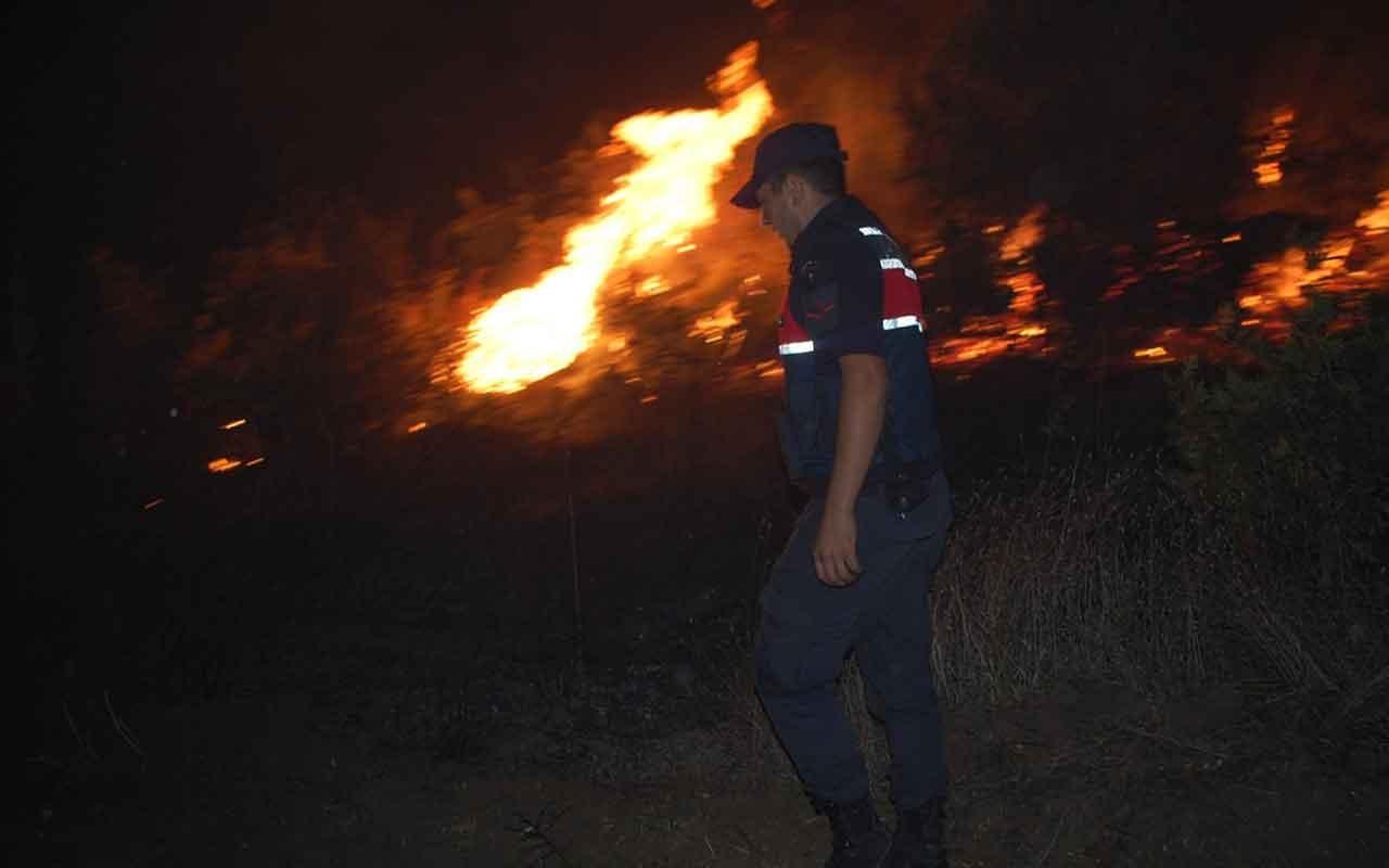 Tekirdağ Malkara'da orman yangını
