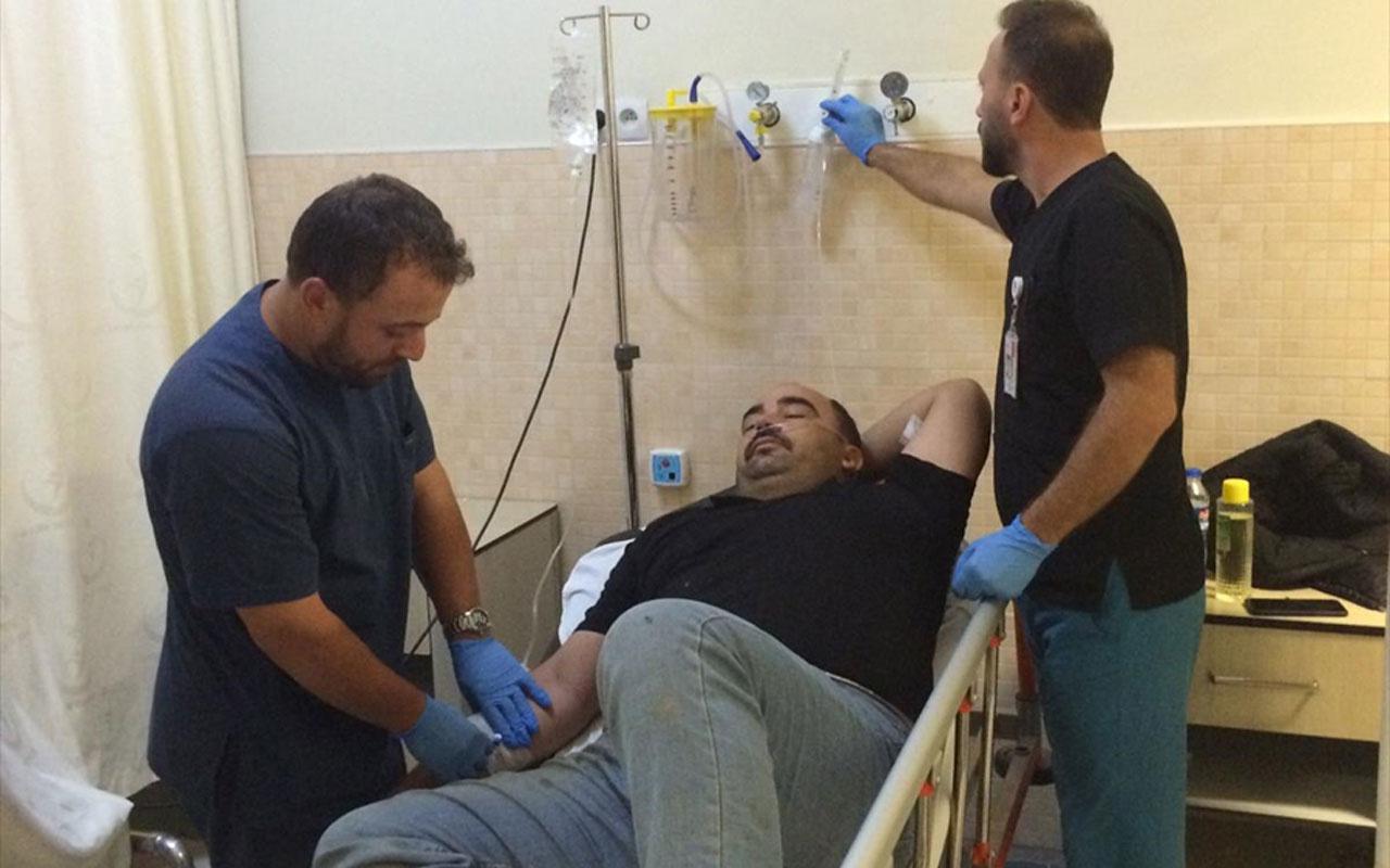 Konya'nın Çumra ilçesinde arılar tarım işçilerine saldırdı: 19 yaralı