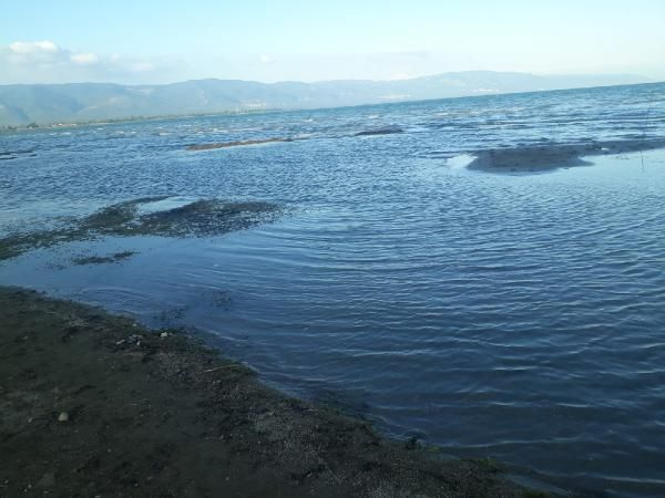 İznik gölünde adalar oluştu yaz sonu gelince hep bu oluyor