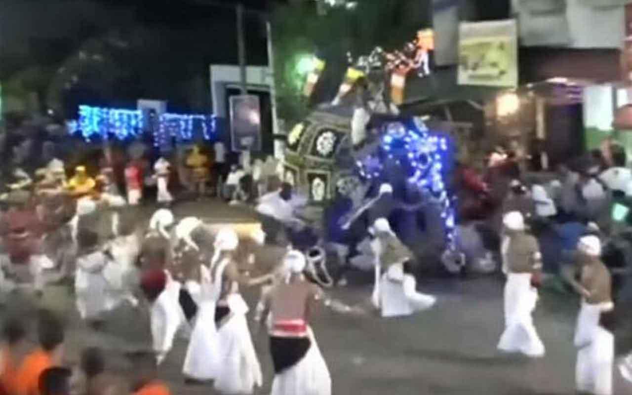 Sri Lanka'da fil tören alayındaki 18 kişiyi yaraladı
