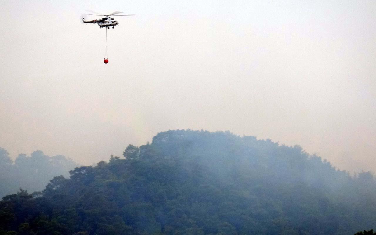 Muğla'nın Ortaca ilçesinde orman yangını! Söndürme çalışmaları devam ediyor