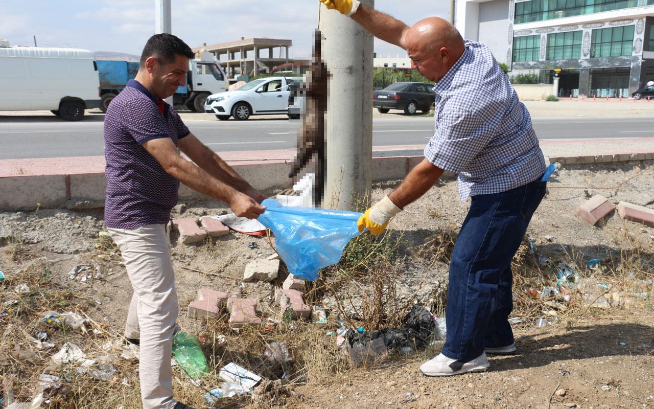 Konya'da gelincik hayvanı boynundan ve ayaklarından asılarak öldürüldü
