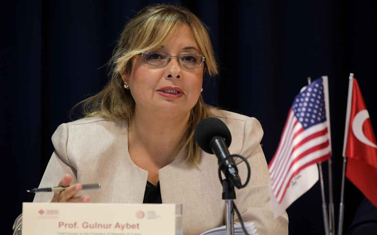 Cumhurbaşkanlığı Başdanışmanı Gülnur Aybet'den S-400 açıklaması