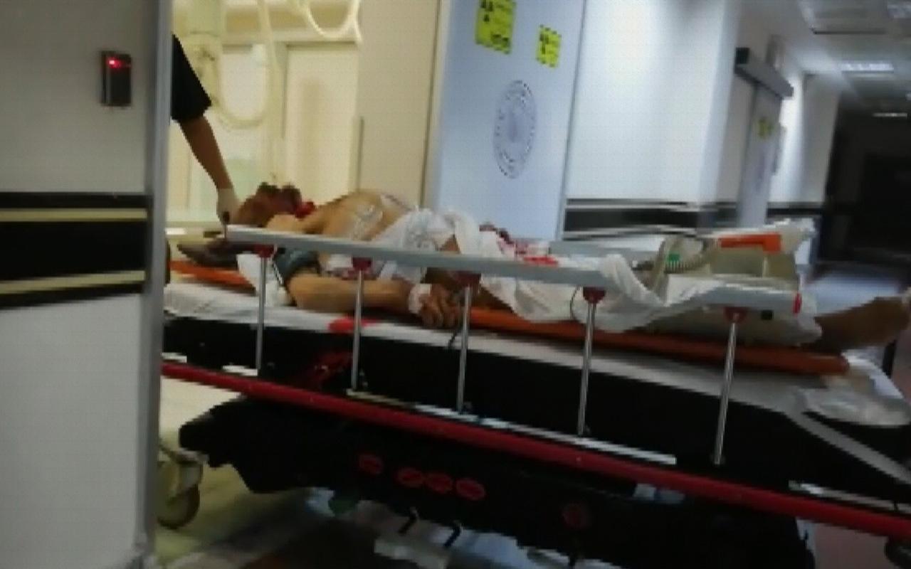 Erzurum'da ayı saldırısı 1 ölü 2 yaralı