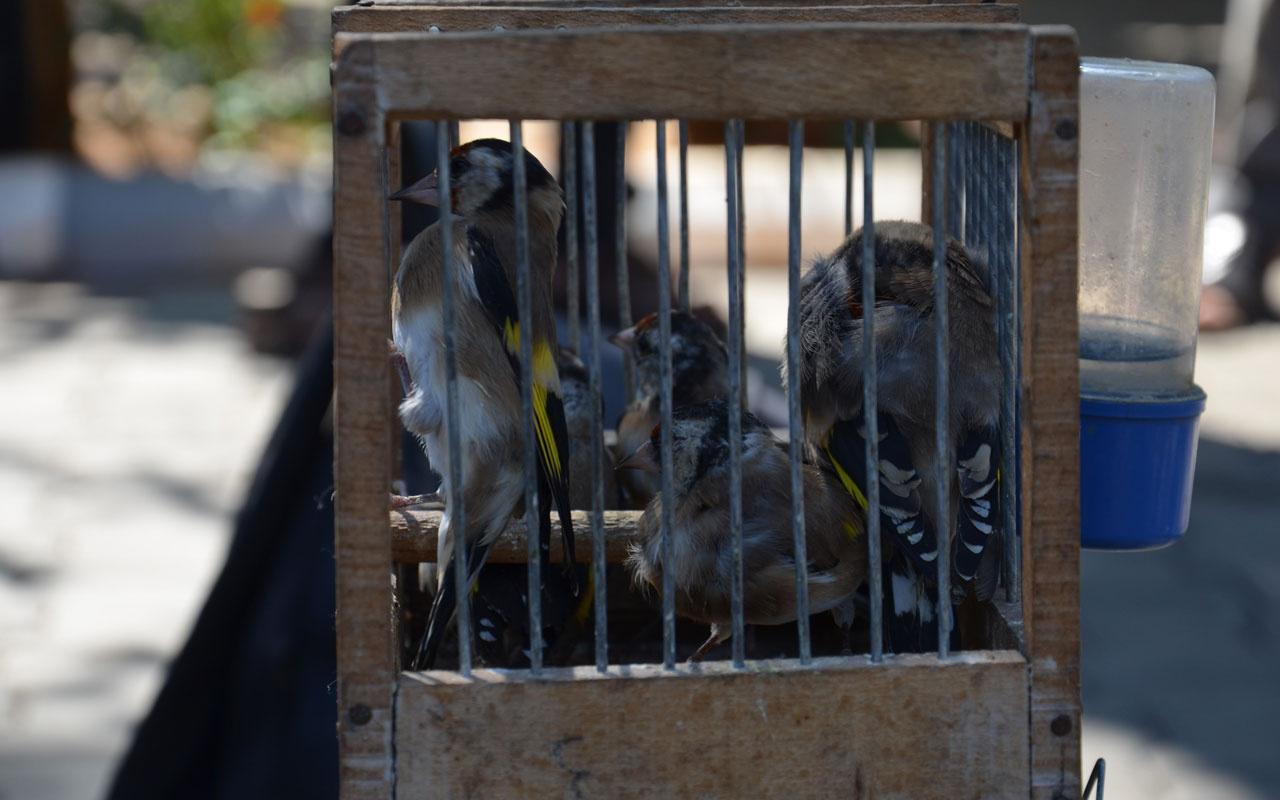 Saka kuşu avlayan 2 kişiye 9 bin 800 TL ceza