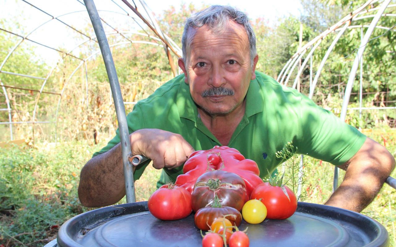 Bir buçuk dönüm arazide yerli tohumdan bin bir çeşit ürün yetiştiriyor! Görenler hayrete düşüyor