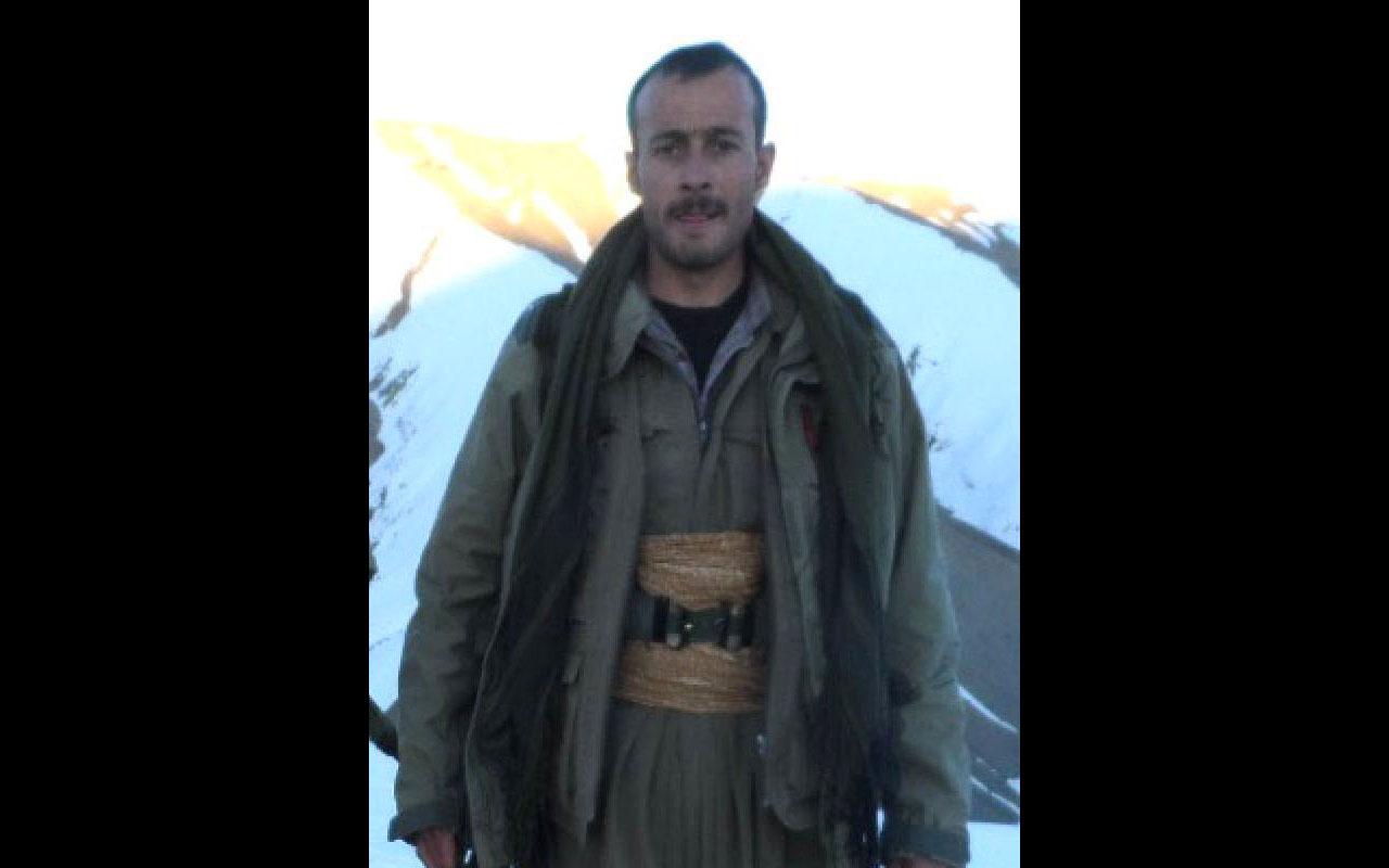 Van'da öldürülen PKK'lı terörist 'Gri Liste'de çıktı