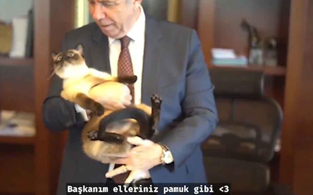 Mansur Yavaş'tan dikkat çeken video! Koltuğunu Khaleesi'ye bıraktı