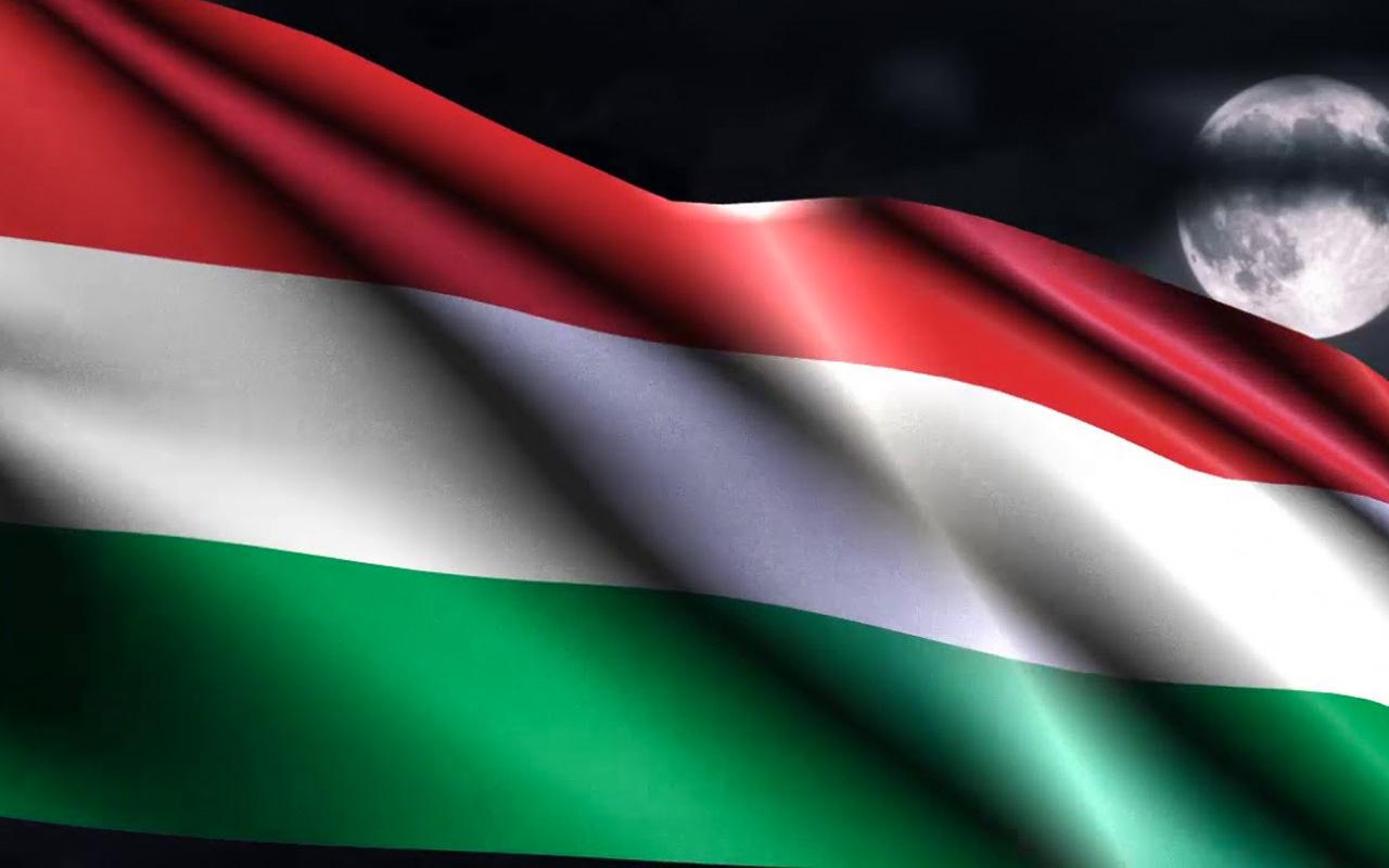 Macaristan'dan Barış Pınarı Harekatı açıklaması! Türkiye'nin yanındayız