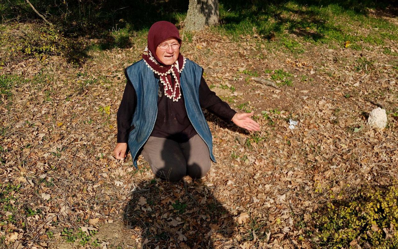 70 yaşındaki kadın yıkım kararını duyunca yere kapanıp gözyaşlarına boğuldu