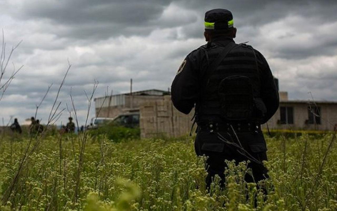 Meksika'da bir çiftlikte 14 ceset bulundu