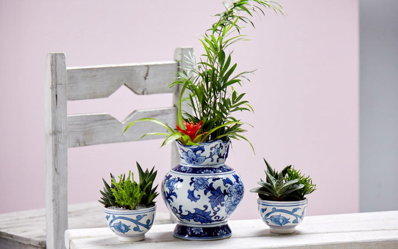 Objeli bitkilendirme nedir dekorasyonda en son trendler!