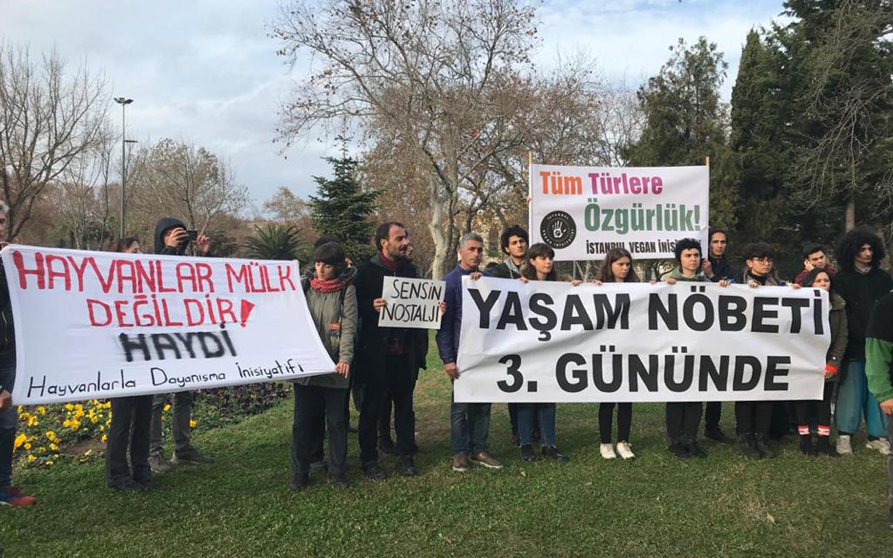 İBB önündeki fayton protestosu devam ediyor