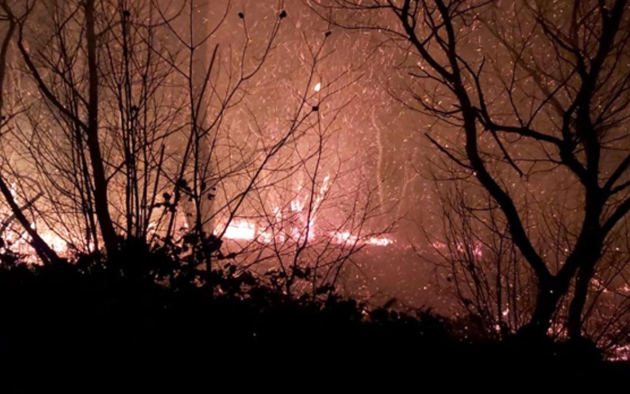 Karadeniz'deki orman yangınlarını terör örgütü PKK üstlendi!