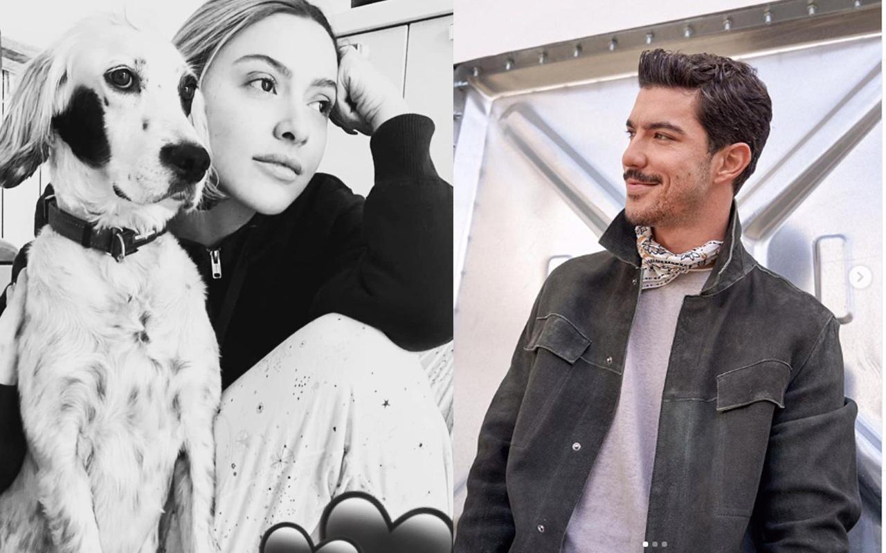 Kaan Yıldırım Hadise aşkı sosyal medyada patladı köpek detayı olay!
