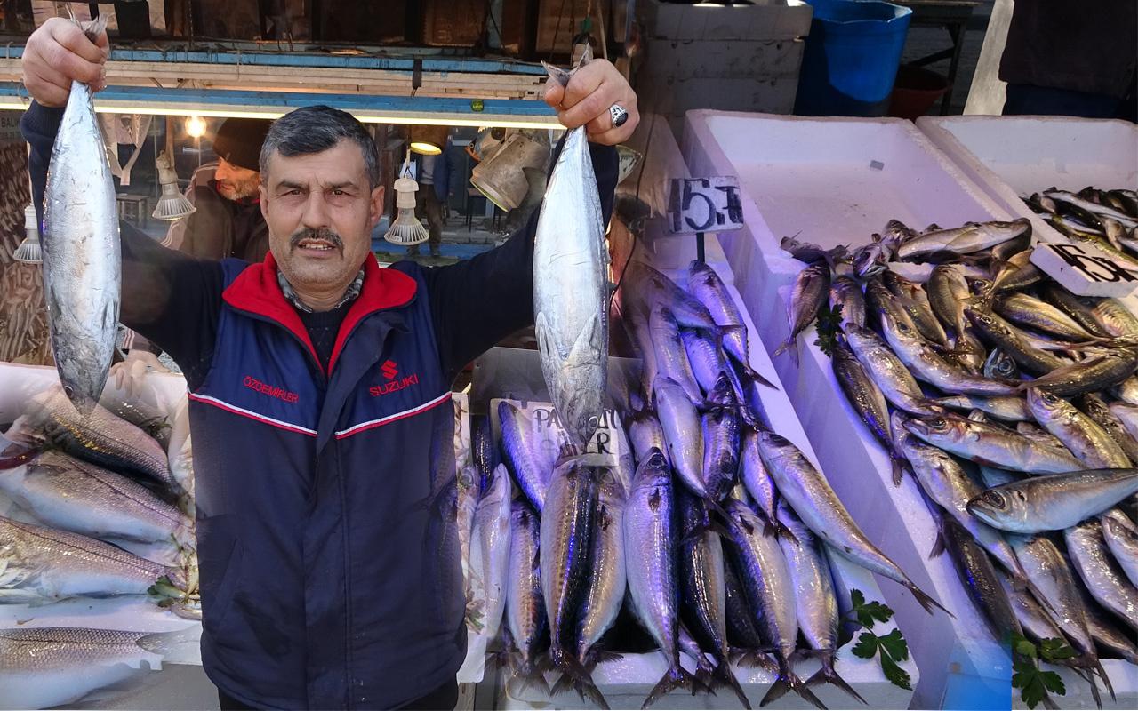 Karadenizde sular bereketli balık tezgahları dolmaya başladı