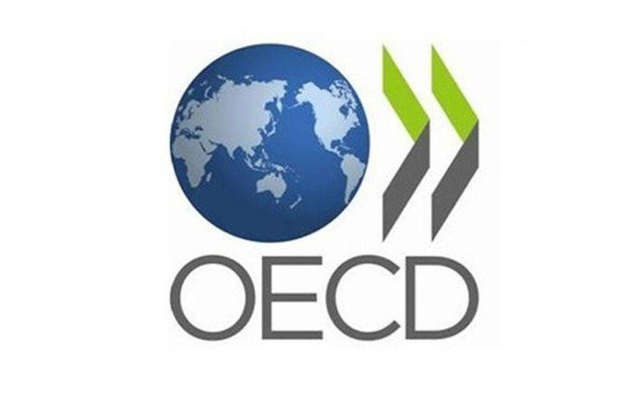 OECD'den Türkiye ekonomisiyle ilgili şaşırtan tahmin!