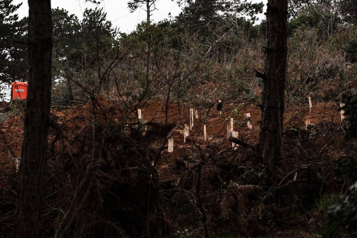 İstanbul'da 2 koronavirüs mezarlığı açıldı tabutla gömülüyorlar