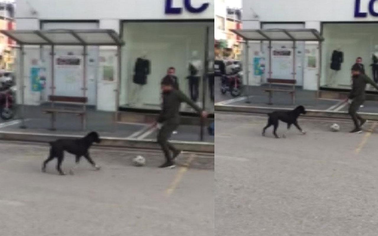 Sokakta kimseyi bulamadı, köpekle futbol oynadı