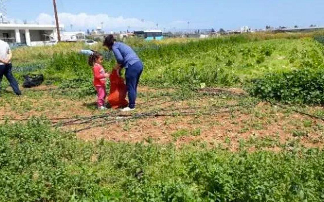KKTC'de çiftçiden korona nedeniyle zorda olan halka bedava sebze jesti
