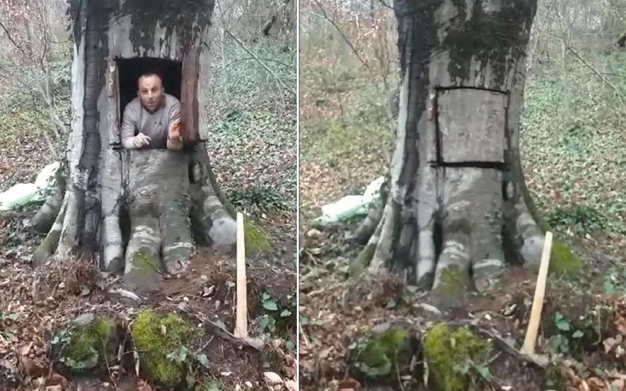 Samsun'daki şahıs koronavirüsten korunmak için 400 yıllık ağacı oydu