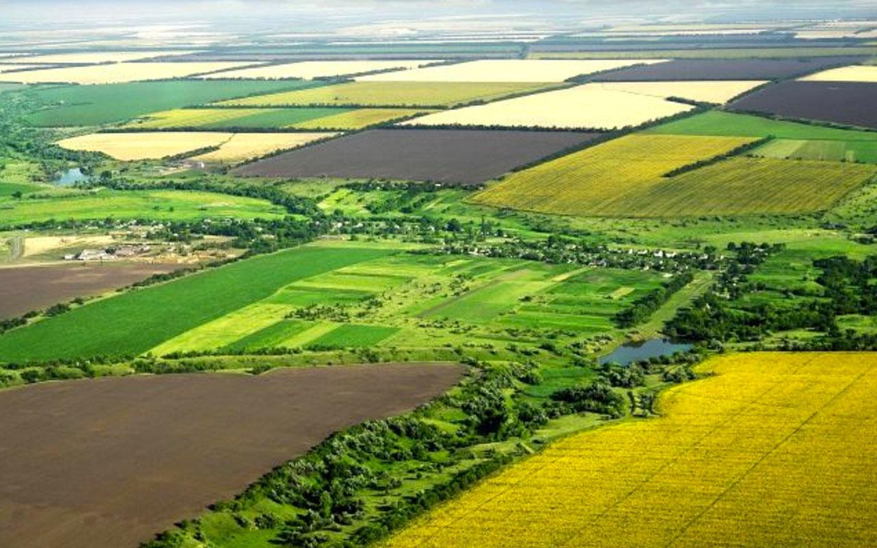 Bakanlık duyurmuştu: 9 milyon metrekarelik hazine arazisi tarıma açılıyor