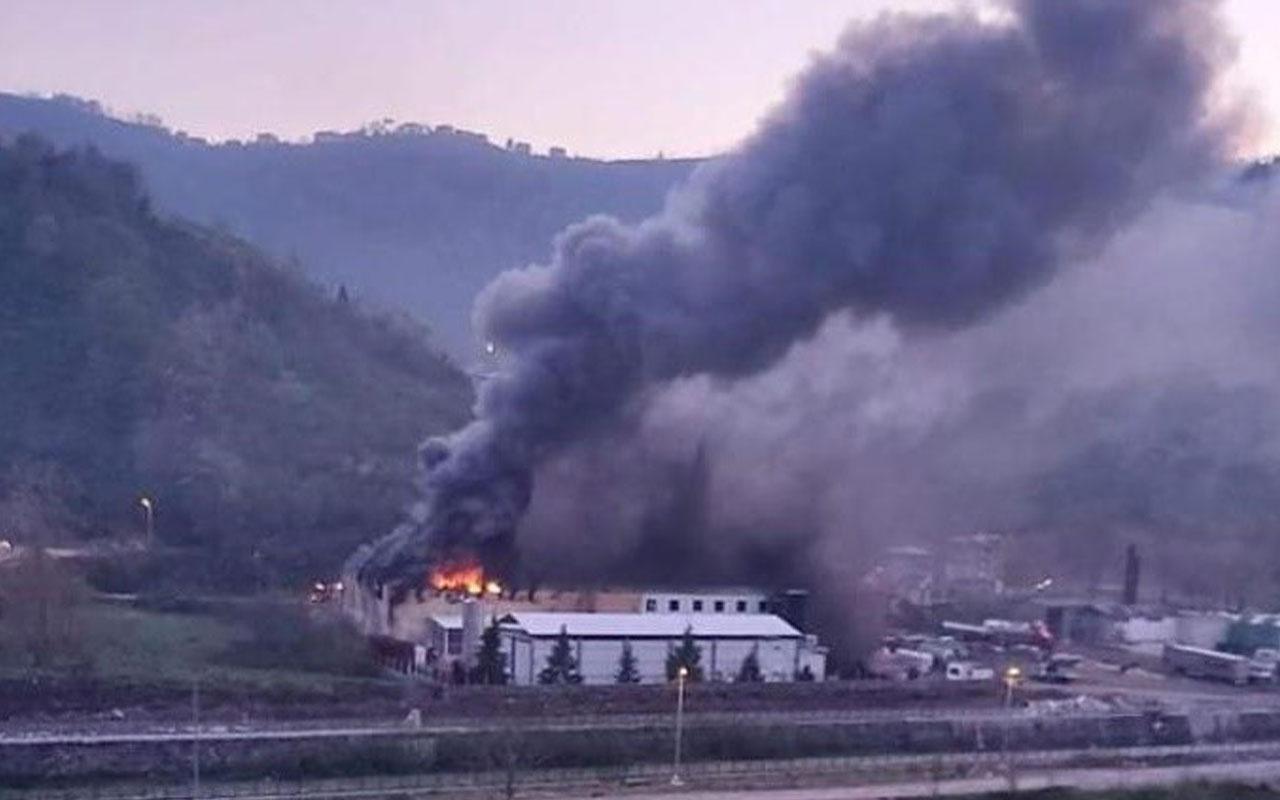 Trabzon'da balık fabrikasının soğuk hava deposunda yangın