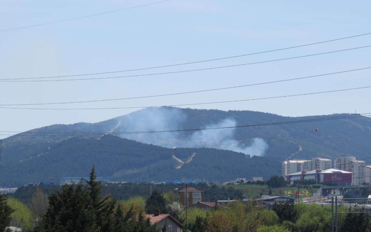 İstanbul Kartal'da korkutan orman yangını