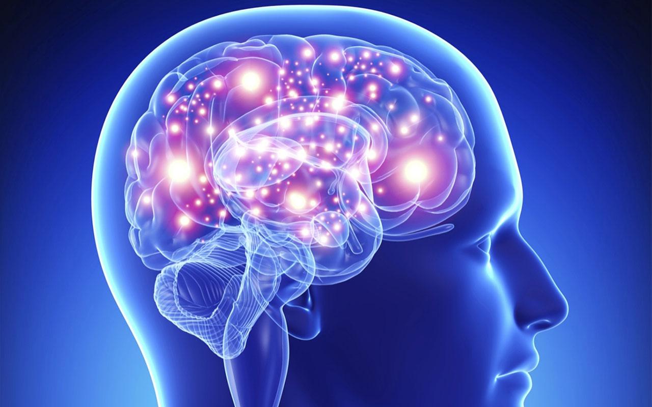 Beyinde aşırı alkol tüketimini kontrol eden bir bölge keşfedildi