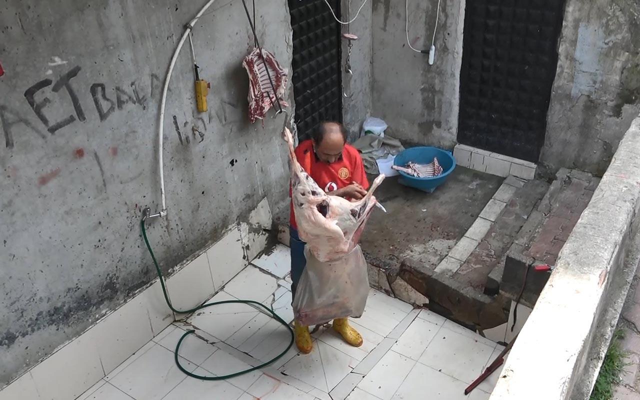 Esenyurt'ta kaçak koyun kestirip sattı zabıta el koydu