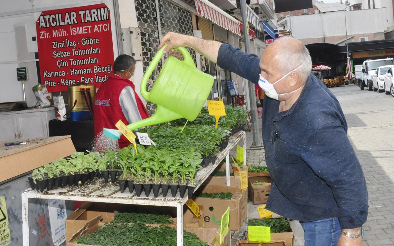 Antalya'da vatandaş fideye yöneldi fide satıcısı: Ömrümde böyle bir şey görmedim